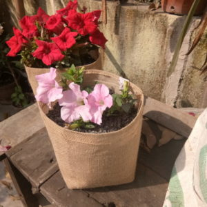 jute grow bags season flowers