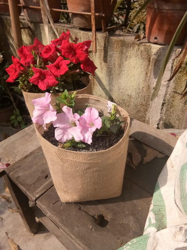 jute grow bags season flowers